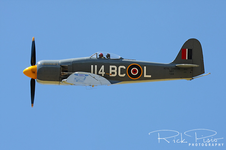 "Hawker Sea Fury ""Argounaut"" in flight during the 2011 Pylon Racing Seminar."