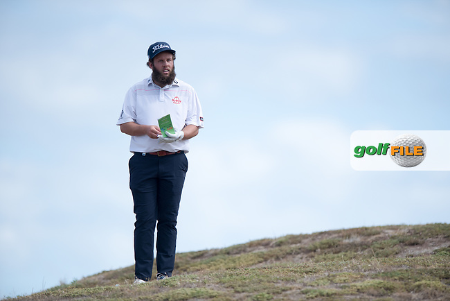 Andrew Johnston (ENG) during the 2nd round of the VIC Open, 13th Beech, Barwon Heads, Victoria, Australia. 08/02/2019.<br /> Picture Anthony Powter / Golffile.ie<br /> <br /> All photo usage must carry mandatory copyright credit (© Golffile | Anthony Powter)