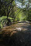 Waddell Creek at RDO in winter