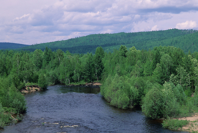RUSSIA, SIBERIA, NEAR YEROFEI PAVLOVICH, TAIGA FOREST WITH RIVER