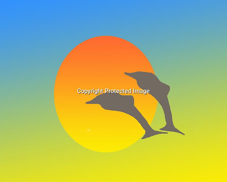 Dolphin Sunset Fine Art Print