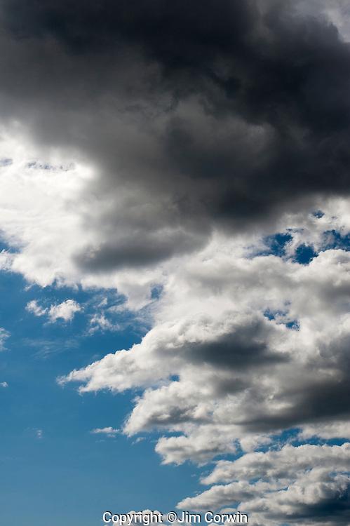 Cumulus congestus clouds with darkening sky