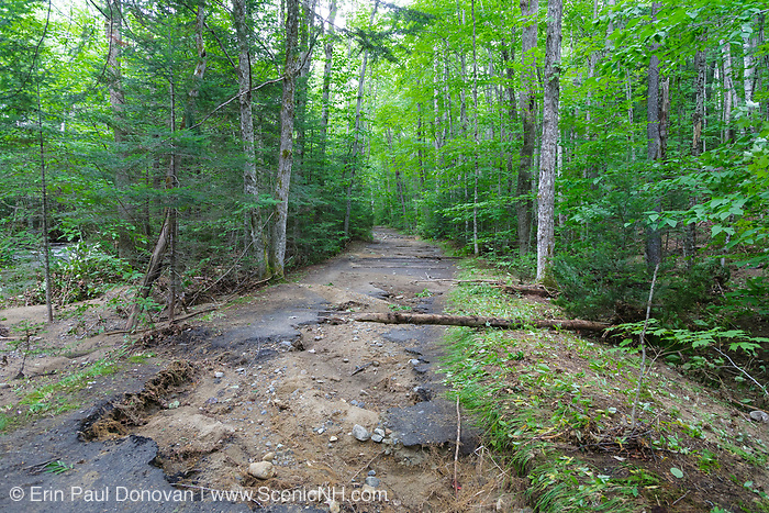 Trail washout along the Lincoln Woods Trail in Lincoln, New Hampshire USA from Tropical Storm Irene in 2011. This tropical storm caused severe damage along the East Coast of the United States and the White Mountain National Forest of New Hampshire was officially closed during the storm.