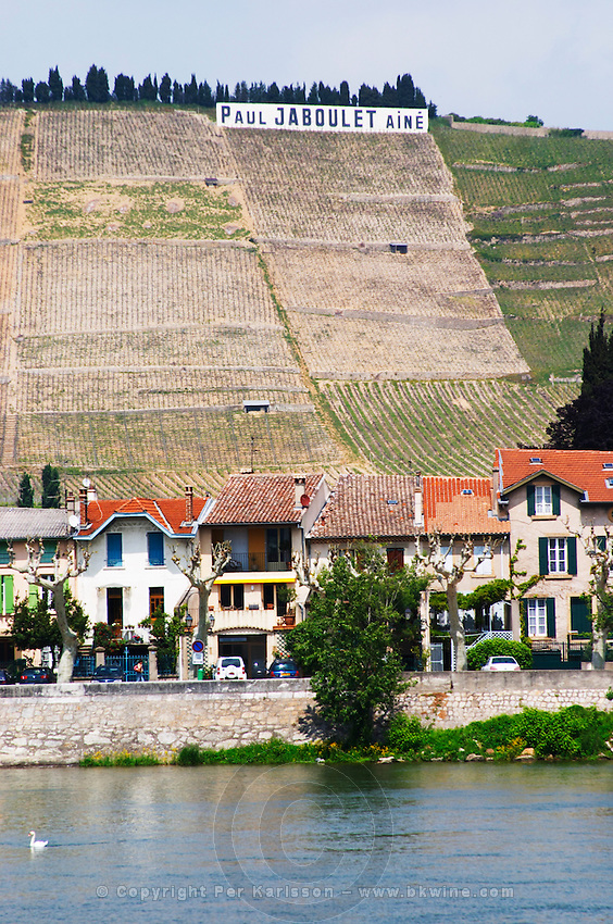 The town Tain l'Hermitage, the riverside side, the river Rhone. The Hermitage vineyards on the hill behind the city Tain-l'Hermitage, on the steep sloping hill, stone terraced. Sometimes spelled Ermitage.  A sign with Paul Jaboulet in the vineyard  Tain l'Hermitage, Drome, Drôme, France, Europe