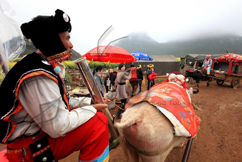 Luoping, Yunnan. Pendant la saison, un paysan en costume traditionnel de la minorité Buyi propose aux touristes une balade en charrette tirée par des buffles sous le regard d'une citadine.///Luoping, Yunnan. During the season, a peasant in the traditional costume of the Buyi minority offers tourists a ride in a cart pulled by buffaloes under the gaze of a city-dweller.
