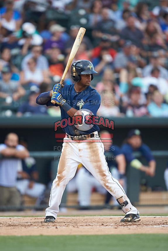 Luis Carpio (18) of the Columbia Fireflies at bat against the Charleston RiverDogs at Spirit Communications Park on June 9, 2017 in Columbia, South Carolina.  The Fireflies defeated the RiverDogs 3-1.  (Brian Westerholt/Four Seam Images)