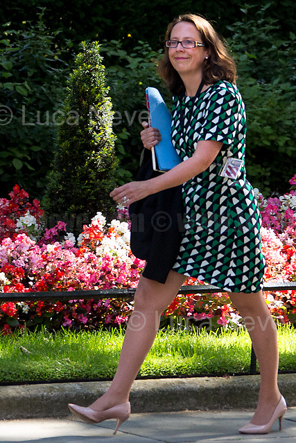 Baroness Evans of Bowes Park (Leader of the House of Lords, Lord Privy Seal).<br /> <br /> London, 19/07/2016. First Cabinet meeting at 10 Downing Street (after the EU Referendum and consequent David Cameron's resignation) for the new Prime Minister Theresa May and her newly formed Conservative Government.<br /> <br /> For more information about the Cabinet Ministers: https://www.gov.uk/government/ministers