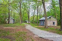 63895-15817 Cabins at Log Cabin Village in spring Kinmundy IL