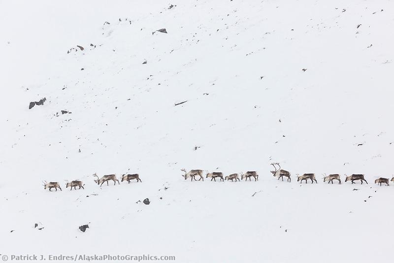 Atigun canyon, Brooks Range, Arctic, Alaska.