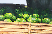 A truck lorry full of water melons watermelons. Montenegro, Balkan, Europe.