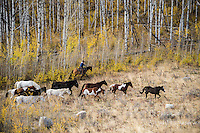 autumn round up Cowboys working and playing. Cowboy Cowboy Photo Cowboy, Cowboy and Cowgirl photographs of western ranches working with horses and cattle by western cowboy photographer Jess Lee. Photographing ranches big and small in Wyoming,Montana,Idaho,Oregon,Colorado,Nevada,Arizona,Utah,New Mexico.