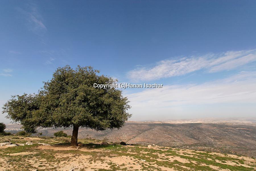 Judea, Beth El mountains. A view of Samaria from Sheikh Zeid