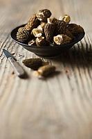 Gastronomie Générale/ Morilles - Stylisme : Valérie LHOMME
