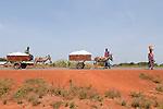 MALI , Bougouni, Bauern transportieren Baumwolle mit Eselskarren   .MALI , Bougouni , farmer transport cotton from field with donkey cart