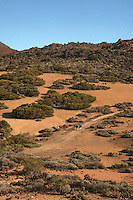 Hiking along one of the many trails in the Parque nacional de las Cañadas.Tenerife, Canary Islands, Spain