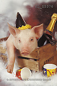 Interlitho, Alberto, ANIMALS, pigs, photos, pig, party(KL15376,#A#) Schweine, cerdos