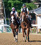 07182020:Tiz the Law trained by Barclay Tagg morning work  at Saratoga 2020 <br /> Robert Simmons/Eclipse Sportswire