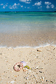 Ile au Cerfs, Mauritius. Turquoise sea, white sand and shells.