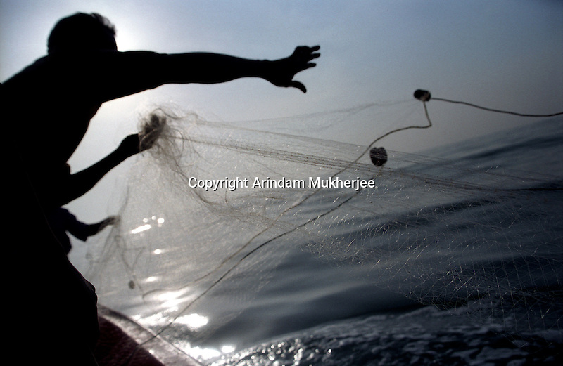Fishermen casting their nets for the first time since the Tsunami.India.