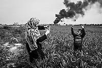Gaza, Shejaiya: Abdallah est prit en photo par sa tante Khawla dans les champs de sa famille. Ces champs n'ont pas pu &ecirc;tre exploit&eacute;s pendant un an &agrave; cause de la polution  due &agrave; la guerre. Derri&egrave;re Abdallah, de la fum&eacute;e provoqu&eacute;e par la combustion de pneus de voitures. 13/02/16<br /> <br /> Gaza, Shejaiya: Abdallah pose for a picture taken by his aunt Khawla in the fields of his family.These fields could not be exploited for a year because of the pollution caused by the war. Behind Abdallah,smoke caused by burning car tires. 13/02/16