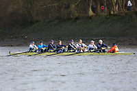 Crew: 157   Putney Town   MasF<br /> <br /> Quintin Head 2019<br /> <br /> To purchase this photo, or to see pricing information for Prints and Downloads, click the blue 'Add to Cart' button at the top-right of the page.