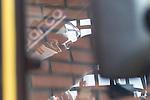 Spanish driver Alberto Mila Monteserin belonging Spanish team Alberto Mila Monteserin during the super pole SP2 of the XXX Spain GP Camion of the FIA European Truck Racing Championship 2016 in Madrid. October 02, 2016. (ALTERPHOTOS/Rodrigo Jimenez)