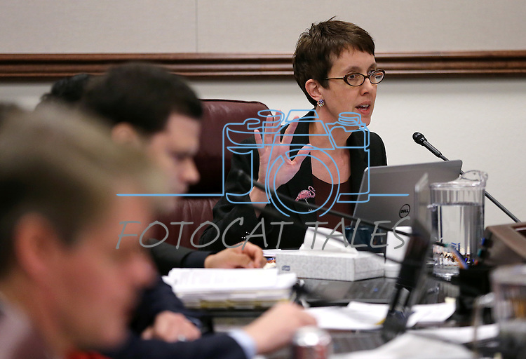 Nevada Assemblywoman Heidi Swank, D-Las Vegas, works in committee at the Legislative Building in Carson City, Nev., on Thursday, May 27, 2015. <br /> Photo by Cathleen Allison