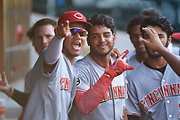 AZL Reds Jose Tello (40) celebrates with teammates after hitting a home run during an Arizona League game against the AZL Cubs 2 on July 23, 2019 at Sloan Park in Mesa, Arizona. AZL Cubs 2 defeated the AZL Reds 5-3. (Zachary Lucy/Four Seam Images)