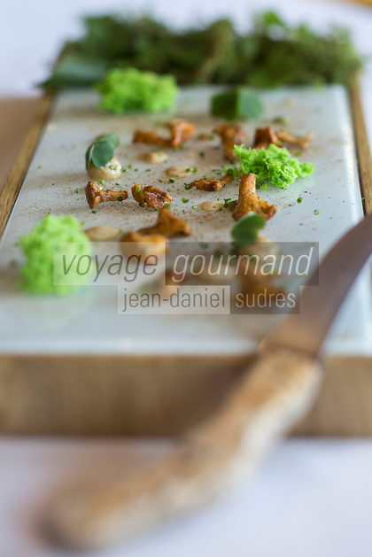 France, Haute-Savoie (74), Veyrier-du-Lac, Ballade en forêt, Cèpes et  mousse de persil, recette de Yoann Conte élève de Marc Veyrat restaurant: La nouvelle maison de Marc Veyrat à l' Auberge de l'Eridan //France, Haute Savoie, Veyrier du Lac,   Porcini and parsley foam, reciepe by Yoann Conte student Marc Veyrat restaurant: La nouvelle maison de Marc Veyrat   at Auberge de l'Eridan