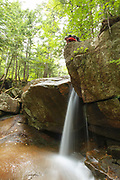 Small cascade on Stony Brook in Hart's Location, New Hampshire during the summer months. This brook is on the side of Mount Tremont Trail.