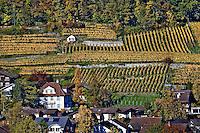 Swiss village and vineyards, Interlaken, Switzerland
