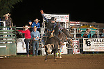 SEBRA - Gordonsville, VA - 9.12.2015 - Bulls & Action