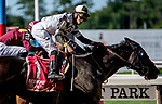 ELMONT, NY - JULY 09: Limousine Liberal wins the Belmont Sprint Championship during Stars and Stripes Racing Festival  at Belmont Park on July 7, 2018 in Elmont, New York. (Photo by Diana Cohen/Eclipse Sportswire/Getty Images)