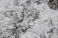 &quot;RIVER ICE-2<br />