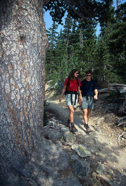 Young couple enjoying a hike on trail, Rocky Mtn Nat'l Park, CO