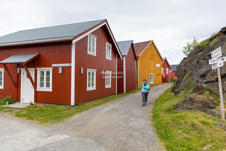 Vega, Norway, Europe