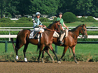 Deputed Testamony, Preakness Stakes winner, in the 1983 Travers post parade