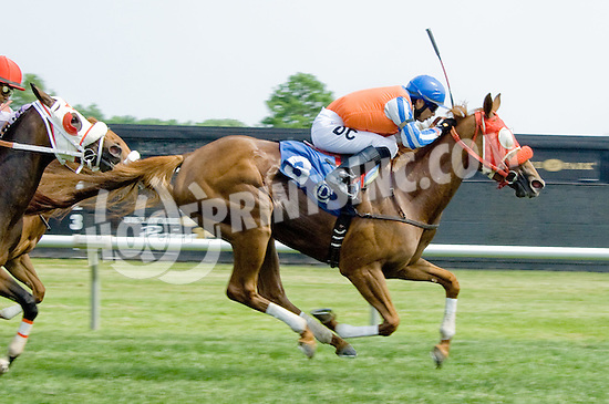 Ava Again winning at Delaware Park on 5/26/12