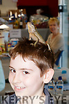 Scary<br /> -------<br /> Sean Fitzgerald from Derrymore didn't looked too scared as an Asian Mountain Horned Dragon sat on his head at the 10th anniversary of the opening of Petmania, Tralee last Saturday afternoon.