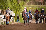 10-20-18 Breeders' Cup Workouts Santa Anita