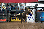 450 5S 450 go 5S Ranch during the American Bucking Bull, Incorporated event in Decatur, TX - 6.3.2016. Photo by Christopher Thompson