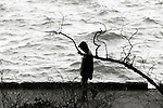 A silouetted and blurred hooded man walking past a craggy branch along a seawall.