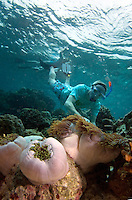 November 27th, 2008_MALDIVES_ A group of snorkelers enjoy the reef near the Soneva Fushi resort island in the Baa Atoll, Maldives.  Soneva Fushi is a leader in green practices and plans to be carbon neutral by 2010 by implementing projects such as a deep-sea water cooling system to replace it's traditional air conditioners.  Photographer: Daniel J. Groshong/Tayo Photo Group