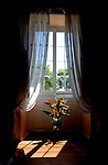 Vase of Strylitzia/ Birds of Paradise against French windows, House San Miguel, Tenerife, Canary Islands
