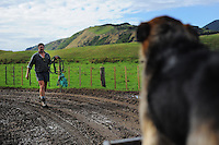 Worksafe NZ sheep and beef farming photoshoot at Queen Elizabeth II Farms at Raumati South, New Zealand on Thursday, 8 May 2014. Photo: Dave Lintott / lintottphoto.co.nz