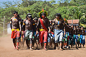 Pará State, Brazil. Aldeia Kokraimoro (Kayapo); warriors in full body paint and featehr cocaas dancing during the Festa de Jabuti (land tortoise festival).