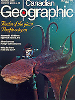 "Canadian Geographic Magazine Cover Story on ""Realm of the Giant Pacific Octopus"".  Written and Photographed by Dale Sanders.  2000 word Article and Photos."
