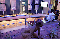 The Hominids dispaly room at the Nairobi National Museum in Kenya.