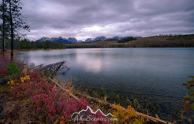 Idaho, South Central, Stanley. Autumn color on the shorlein of Little Redfish Lake at dawn.
