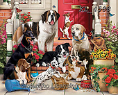 Interlitho-Simonetta, REALISTIC ANIMALS, REALISTISCHE TIERE, ANIMALES REALISTICOS, paintings+++++,dogs,KL4588,#a#, EVERYDAY ,puzzle,puzzles,
